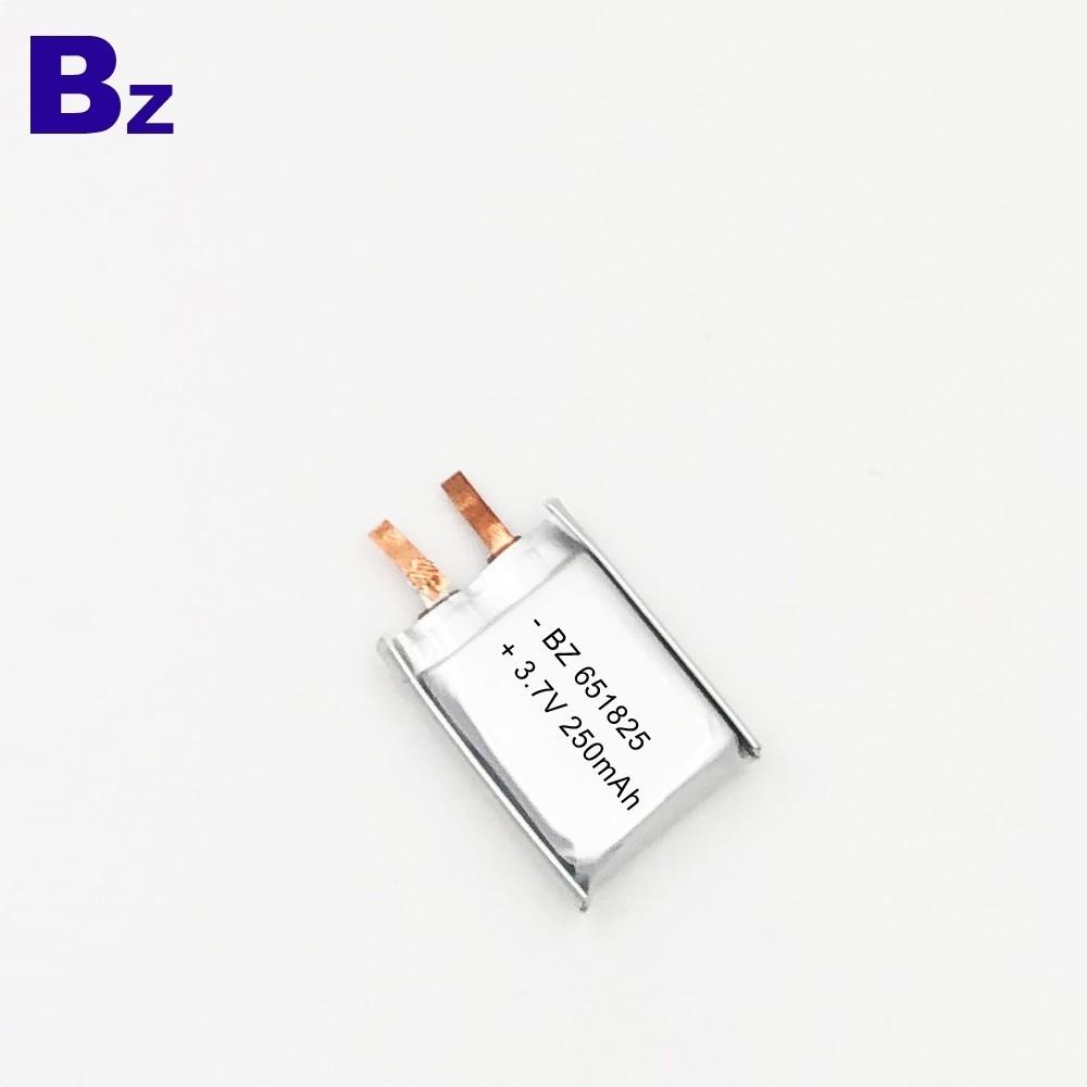 用於智能溫度計的250mAh電池