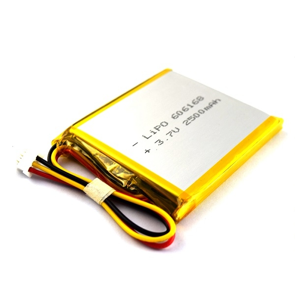 中國最好的鋰電池廠定制電池