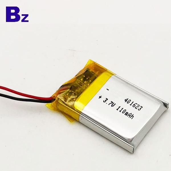 中國鋰電池廠