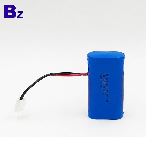 鋰聚合物電池,帶電線和插頭